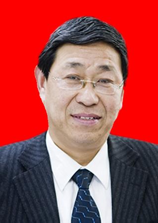 副会长 - 马俊华